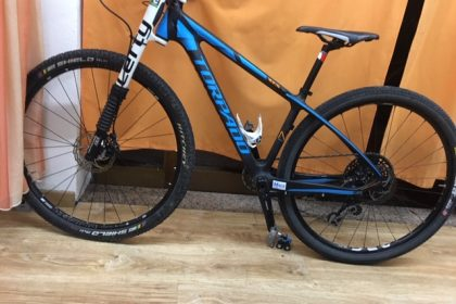 Mountain bike Torpado usata