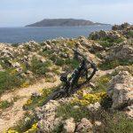 focus-ebike-sicilia-mtb-